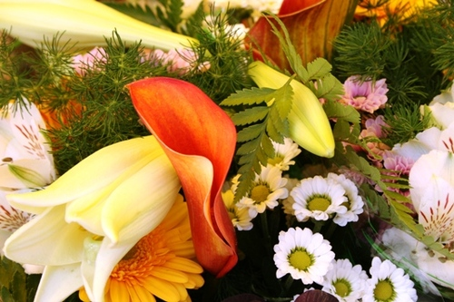 マルシェの花屋さん